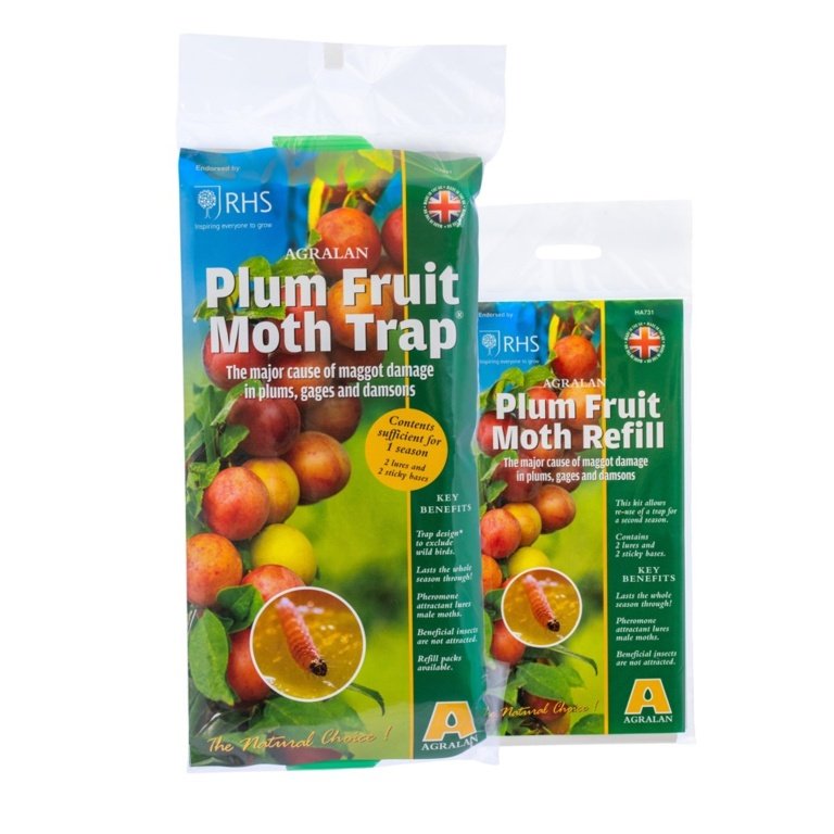Agralan Plum Fruit Moth Trap Protects up to 3 trees