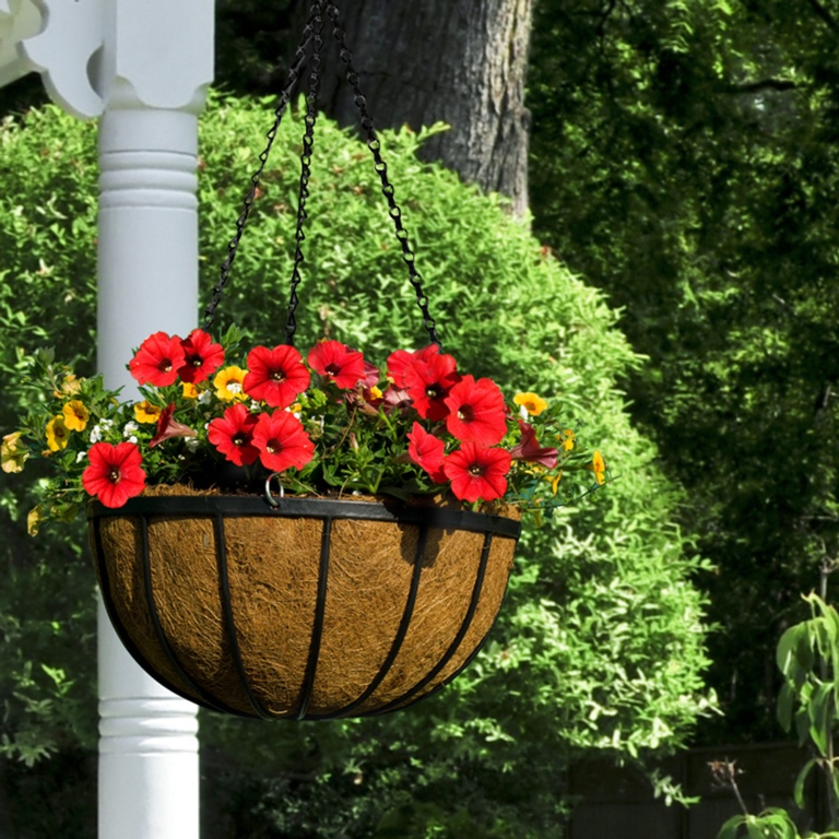 Ambassador Flat Bar Hanging Basket 12""